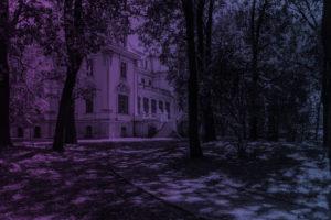 sosnowiec_20-08-2015_foto_radoslaw_kazmierczak_01wwwfn