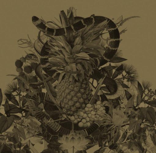 ananas-zloty